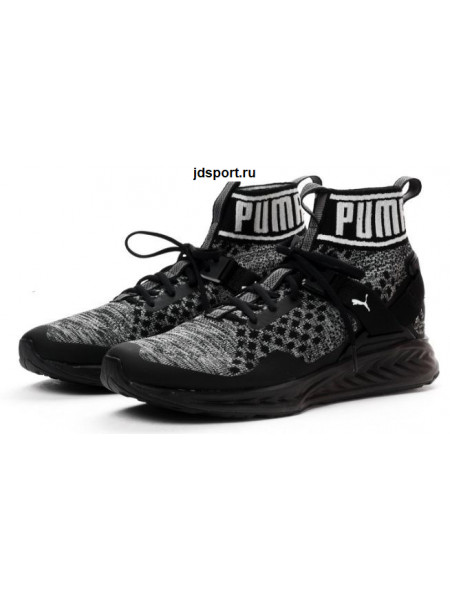 Puma Ignite Evoknit (Black)