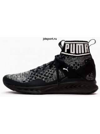 Puma Ignite Evoknit (Black)