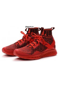 Puma Ignite Evoknit (Red)