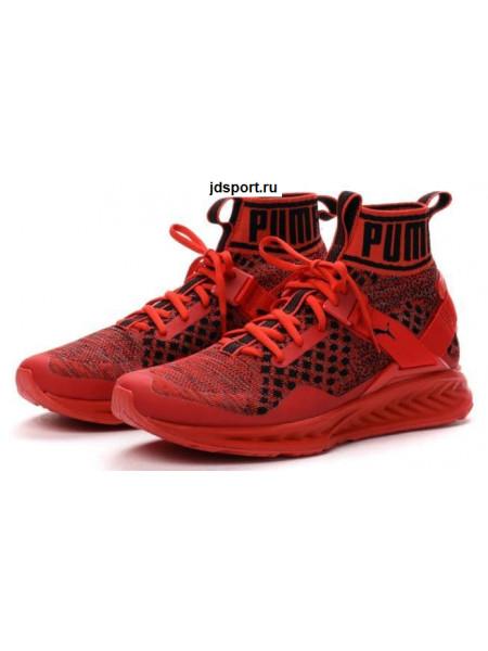 Puma Ignite Evoknit (Red)